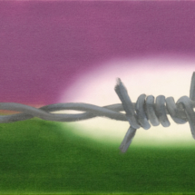 barb wire | oil on canvas, 8o x 3o cm